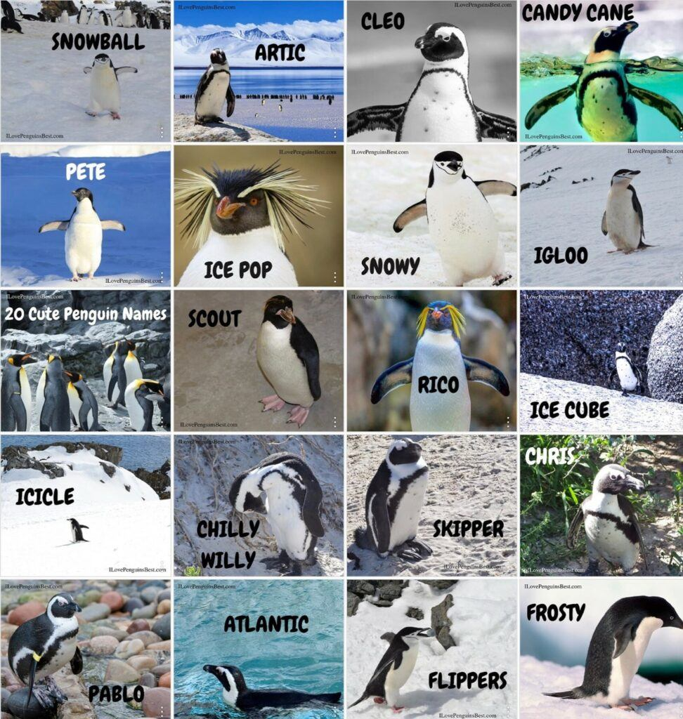 Name Tags for Penguin Party